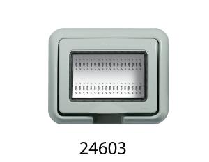 24603