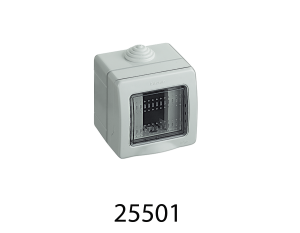 25501