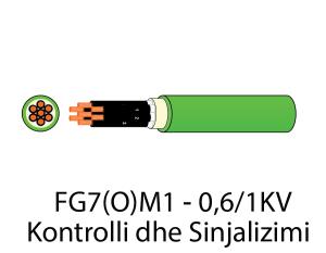 FG7OM1--Kontrolli()
