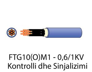 FTG10-kontrolli-()